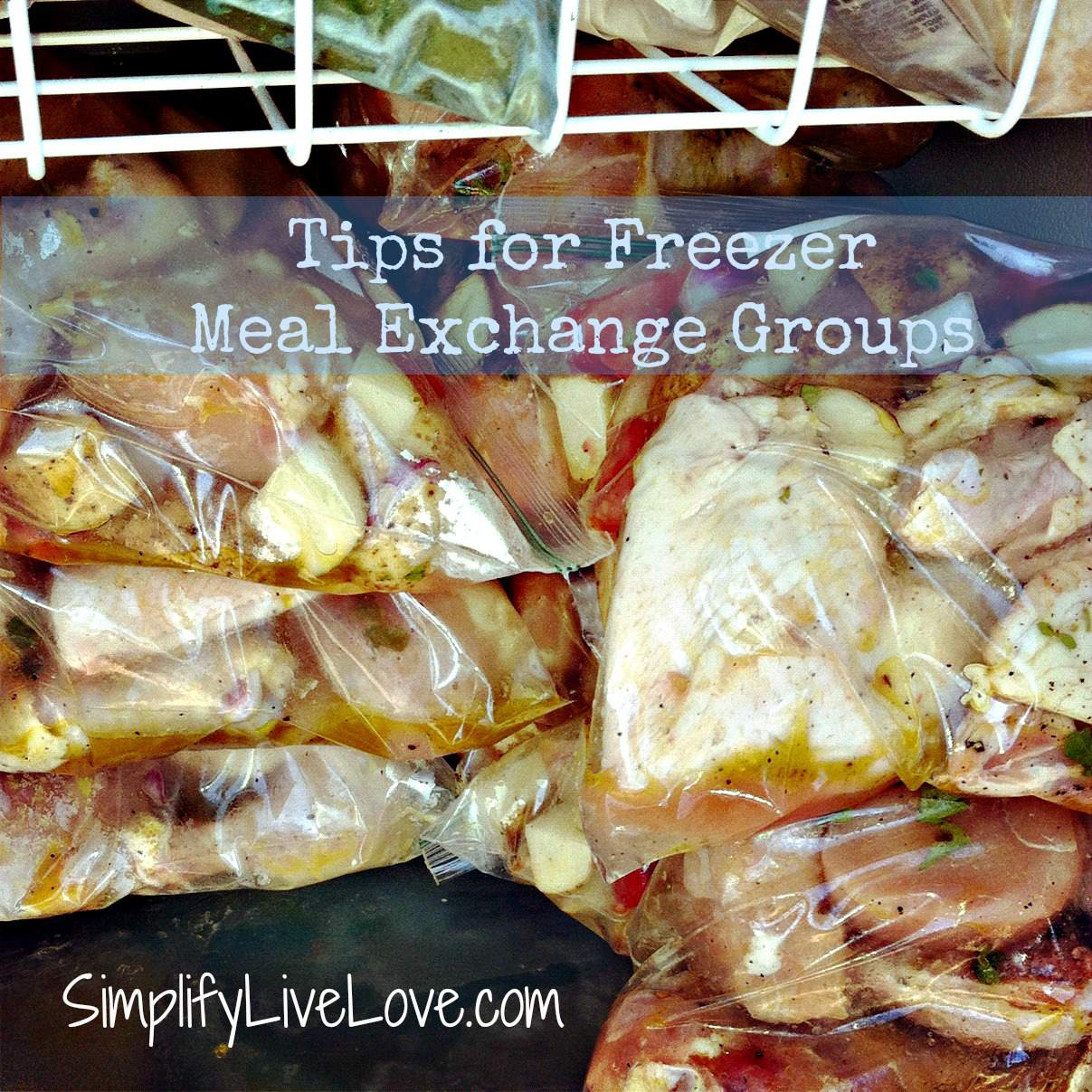 Tips for Setting up a Freezer Meal Exchange