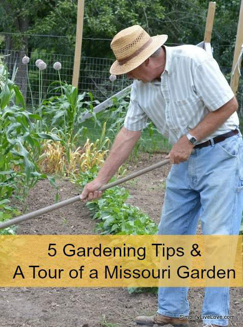 5 gardening tips and a tour of my dad 39 s garden simplify - Tips for a lovely garden ...