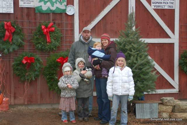 kelly tree farm