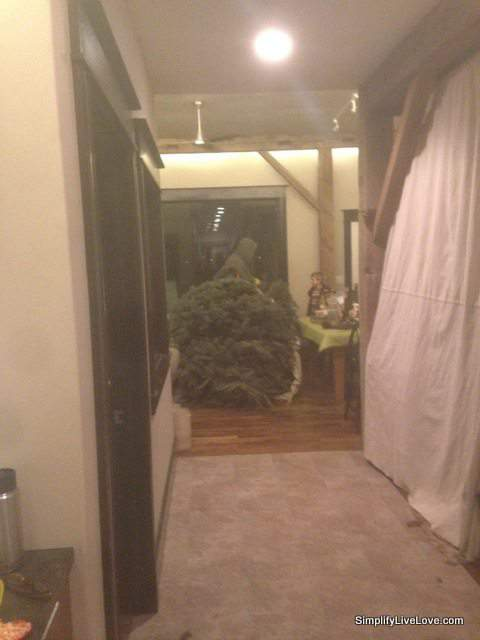 shoving the tree in the barn door