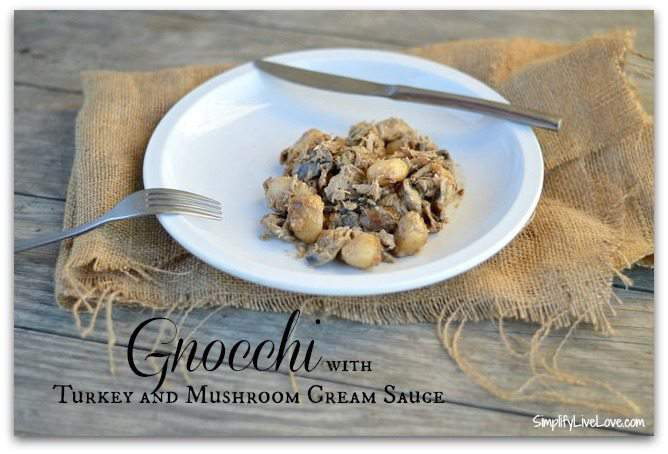 Gnocchi with Turkey & Mushroom Cream Sauce
