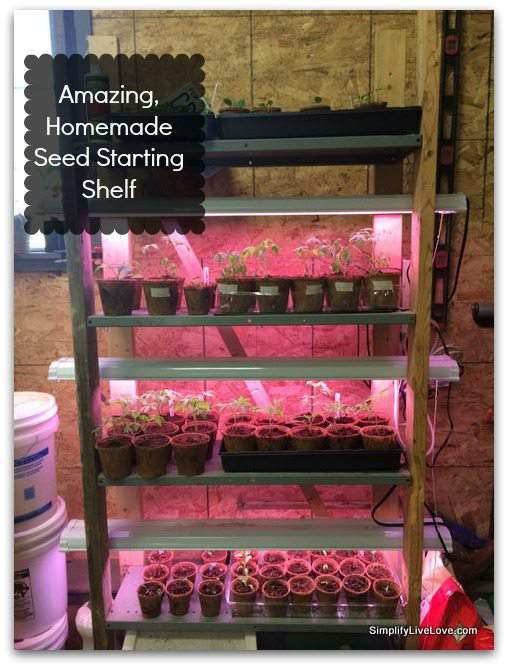 Amazing, homemade seed starting shelf