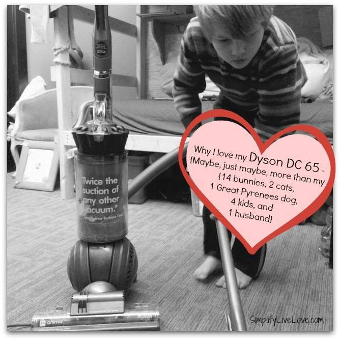 Dyson DC 65 Animal Vacuum Cleaner Review