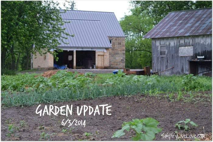 June garden update - Simplifylivelove