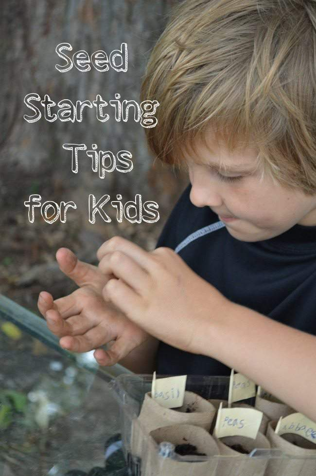 Seed-Starting-Tips-for-Kids-fall-gardens