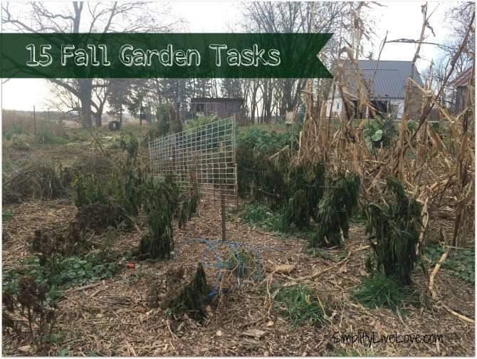 15 fall garden tasks