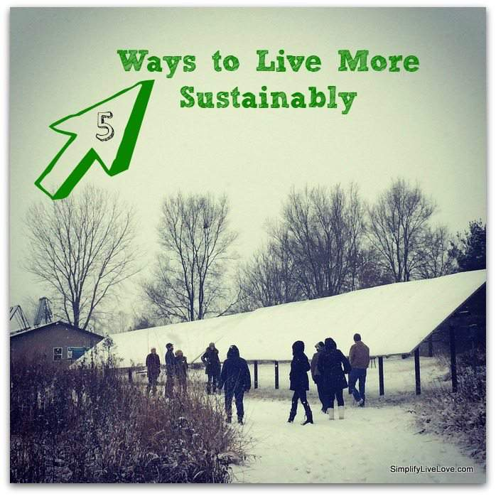 5 Ways to Live More Sustainably