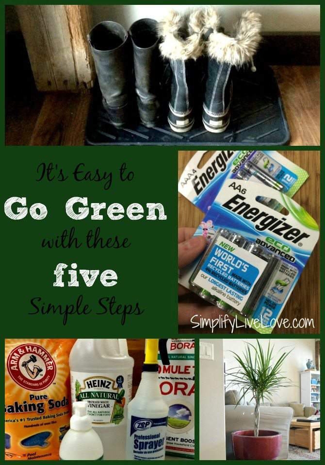 5 Easy Steps Everyone Can Do for Greener Living #BringingInnovation #CollectiveBias #ad9
