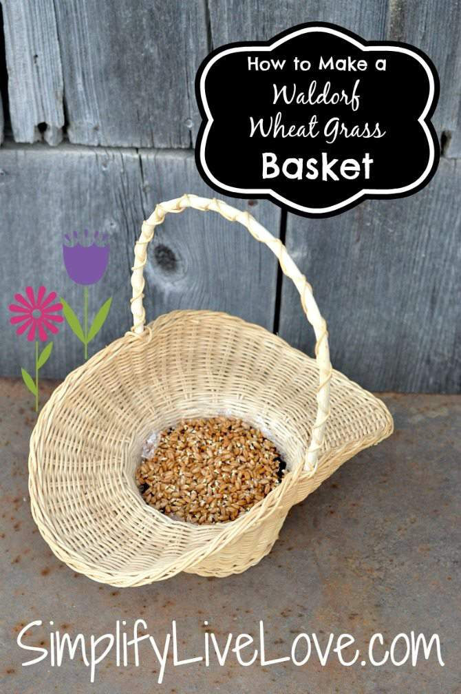 How to Make Waldorf Wheat Grass Baskets2
