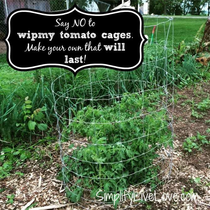 How to Make Strong & Effective Tomato Cages  - DIY Tutorial