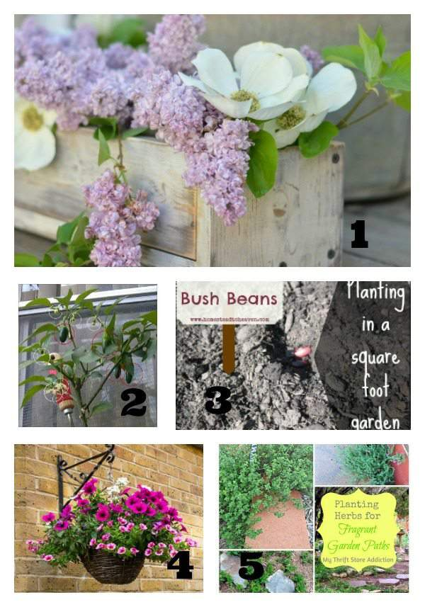 Tuesday Garden Party featured posts 6.9