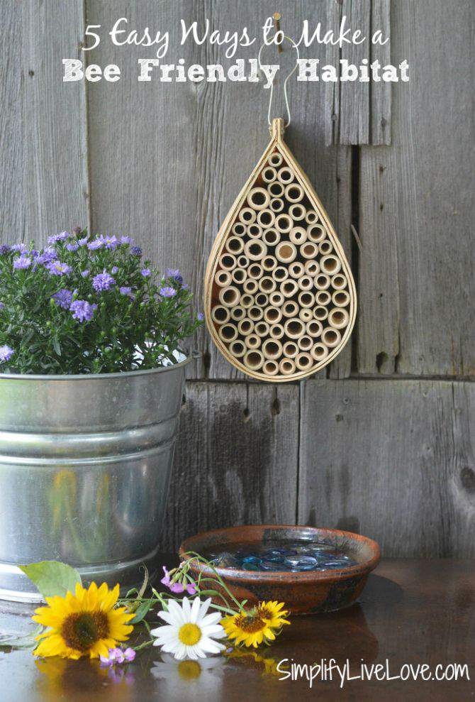5 Easy Ways to Create a Bee Friendly Habitat - featured image from SimplifyLiveLove.com