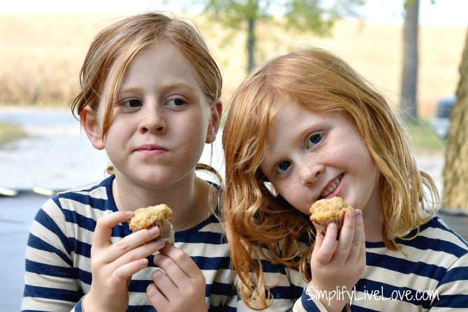 applesauce mini muffins - a great snack for kids and fun for them to make, too!
