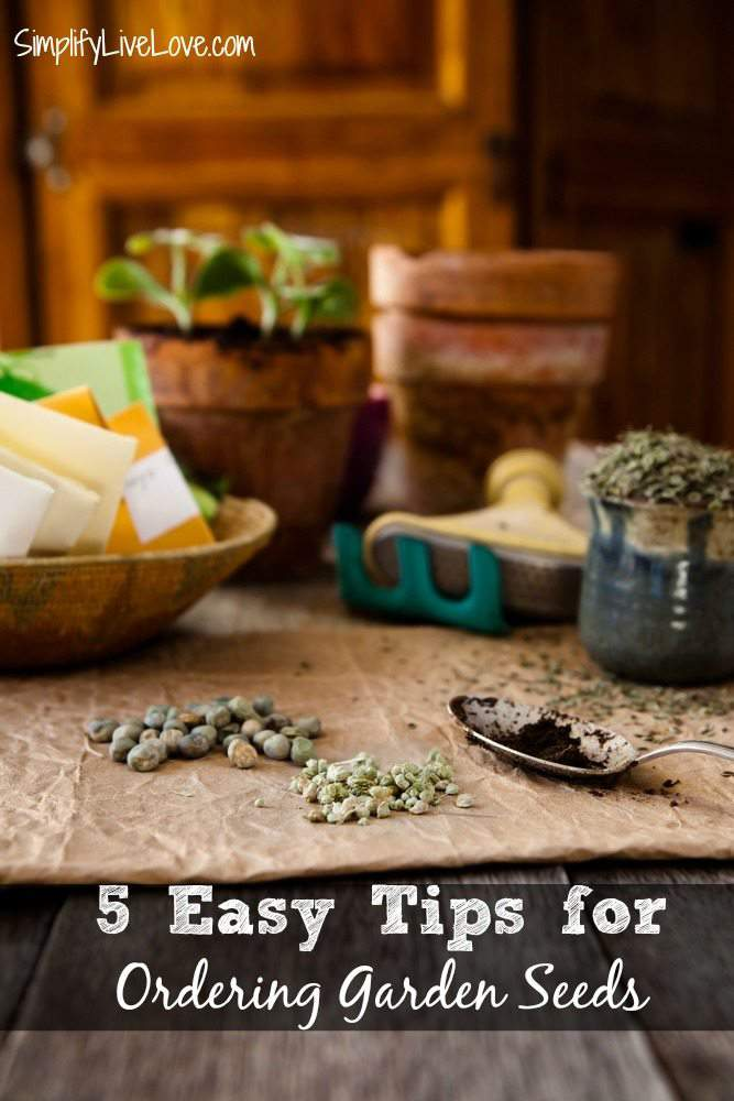 Before you order your garden seeds, make sure you've read through these quick and easy tips to help you maximize your money and make sure you get what you need! These 5 easy tips for ordering garden seeds will help you get your order right!