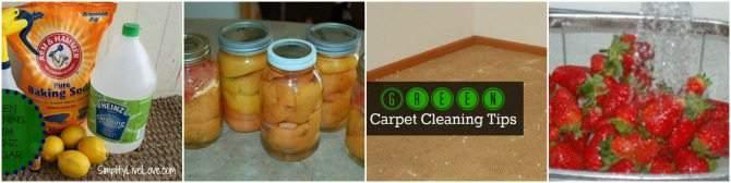 Frugal Green Living Tips
