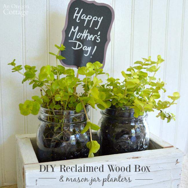 Mother S Day Container Garden Ideas: 6 Easy Planter Ideas For Mother's Day