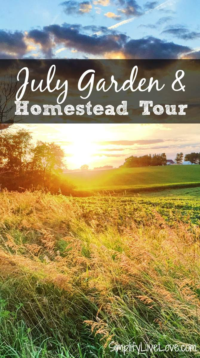 July Garden & Homestead Tour