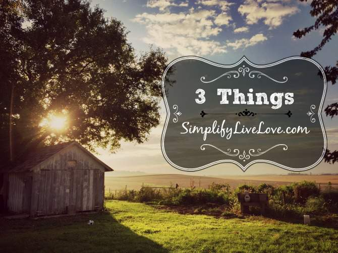 3-things-simplifylivelove-com
