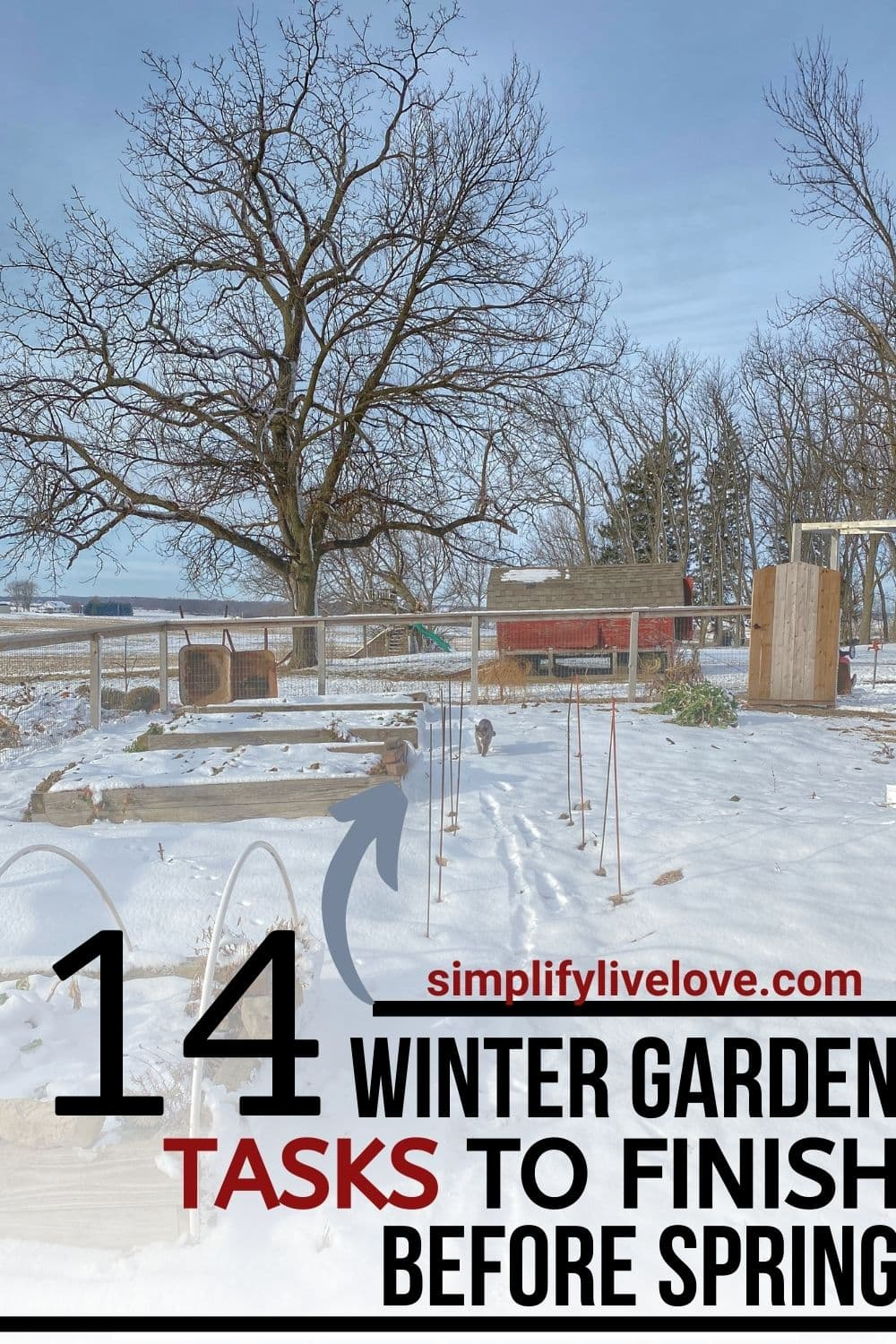 winter GARDEN TASKS