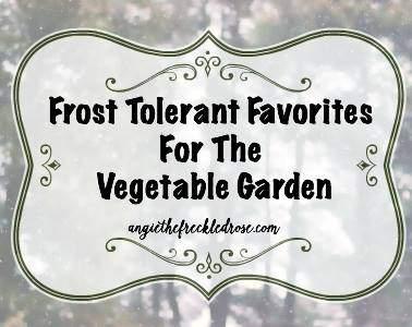 frost-tolerant-veggies
