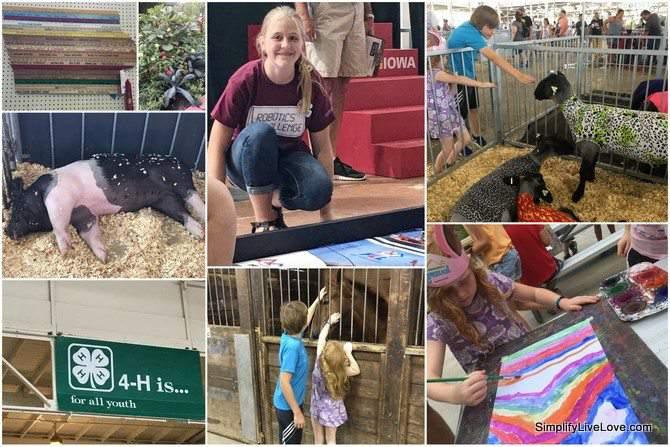 Iowa State Fair Collage