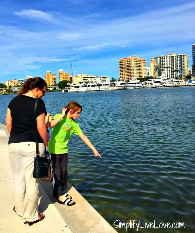 walking-around-bayfront-park-in-sarasota