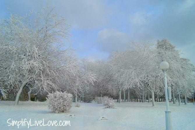 Frost at Niagara Falls