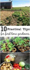If you want to start your first garden but aren't sure where to start, these tips for first time gardeners will be a big help. Growing a garden can be very rewarding, but there are a few things you should consider before you start.