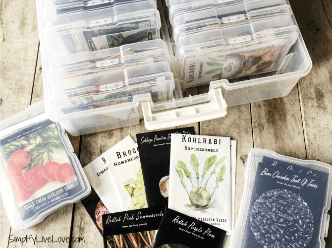 The Best Garden Seed Organizer Ever!