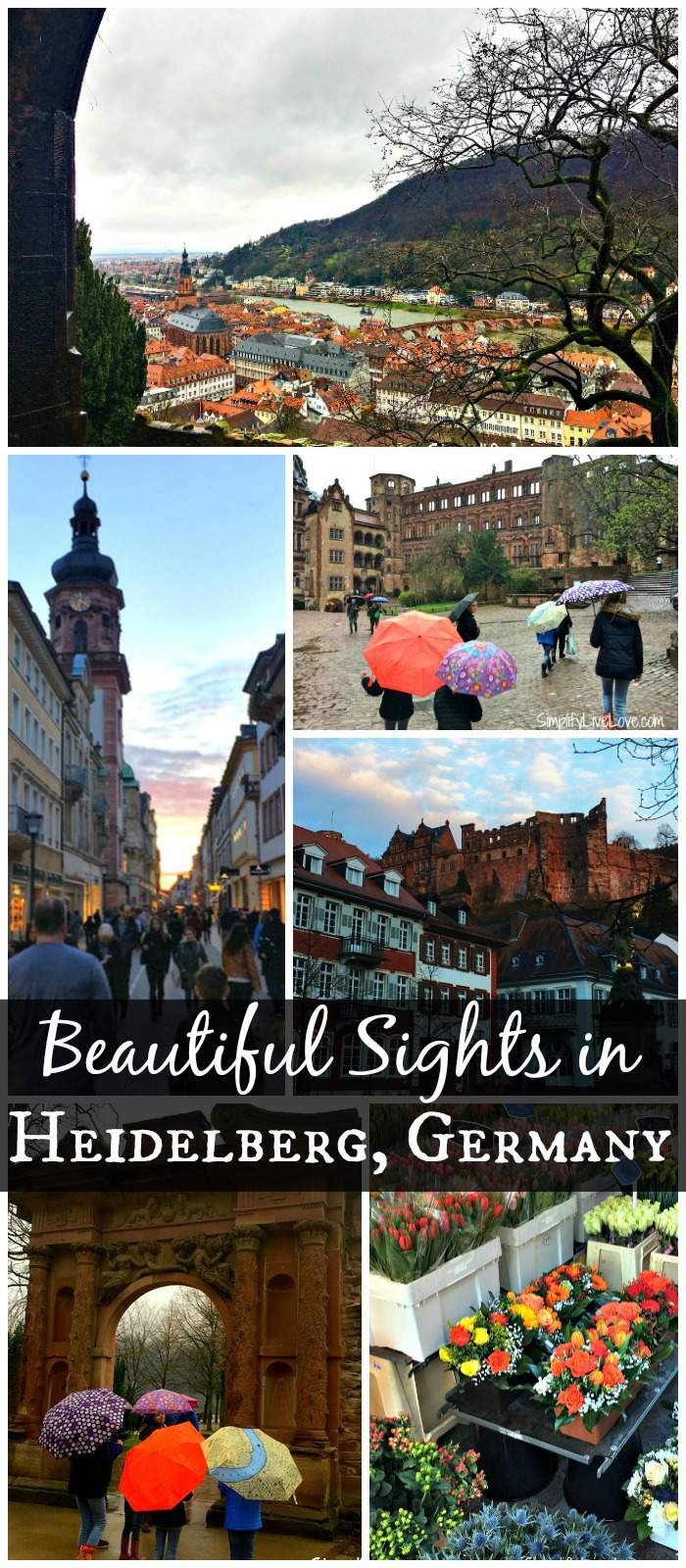 Despite Rick Steve's claim that Heidelberg Germany is not worth a trip, here are several reasons why you might want to visit this beautiful city during your European Vacation.