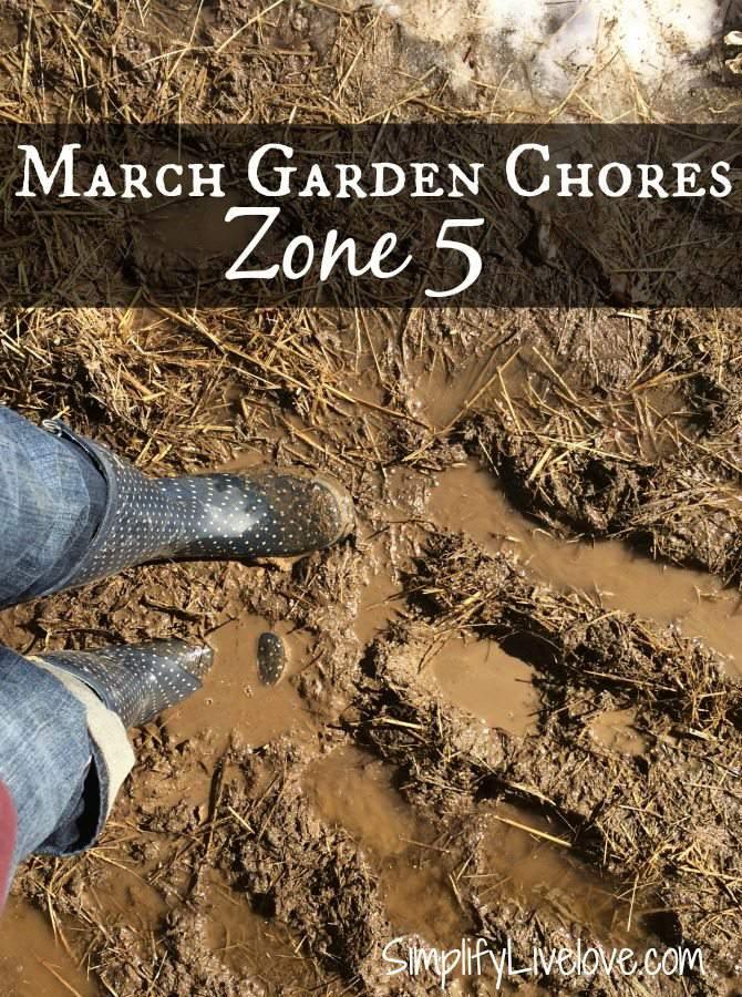 boots in a muddy garden