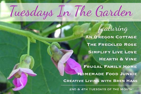 Tuesdays in the Garden 2017
