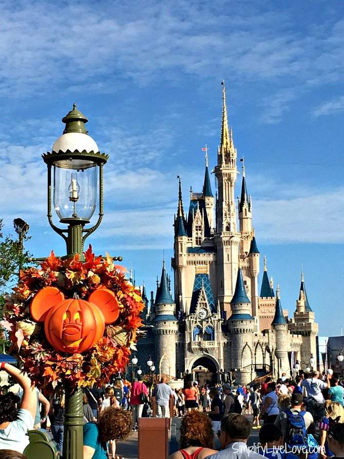 A picture of the Disneyworld castle in the fall.