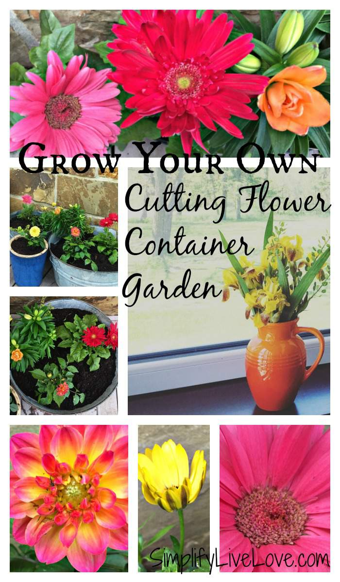 Grow your own cutting flower container garden and enjoy fresh flowers in your home all summer.