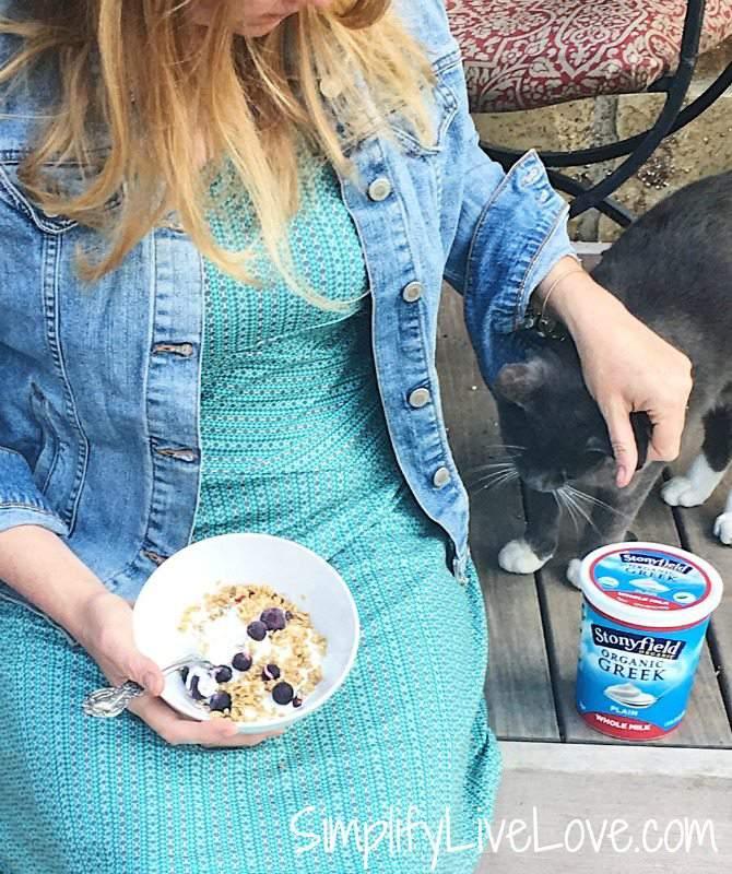 Whole Milk Yogurt Health Benefits
