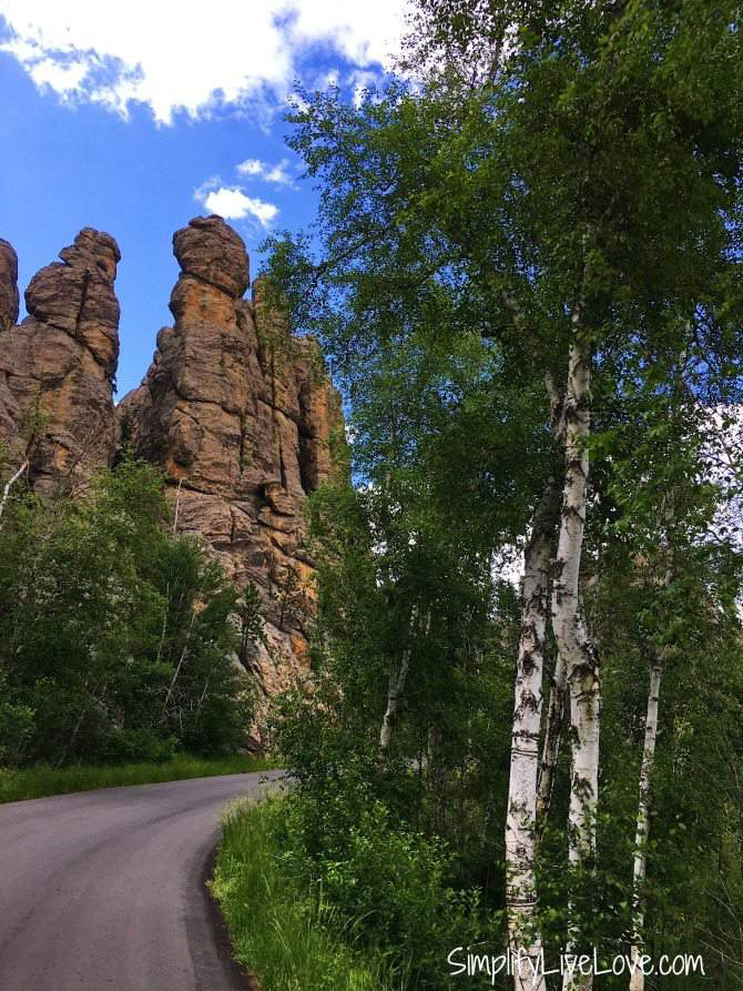 Needles Highway at Custer State Park