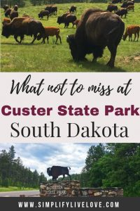 custer state park sights