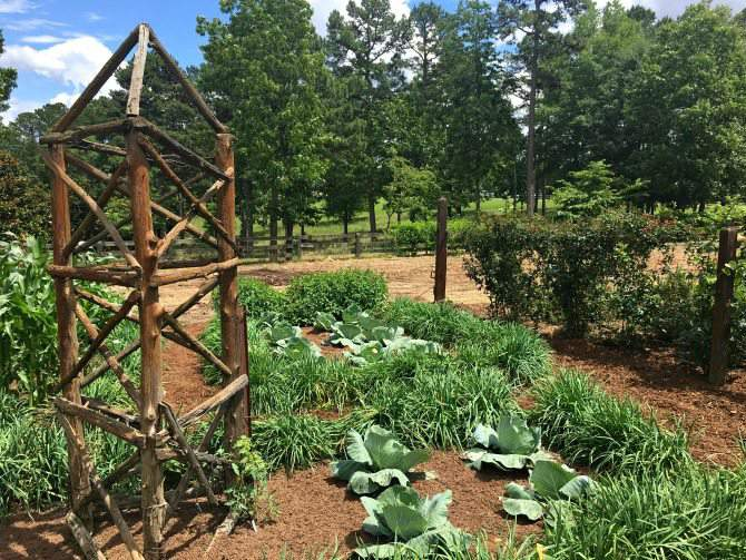 simple wooden support structure at Moss Mountain Farm