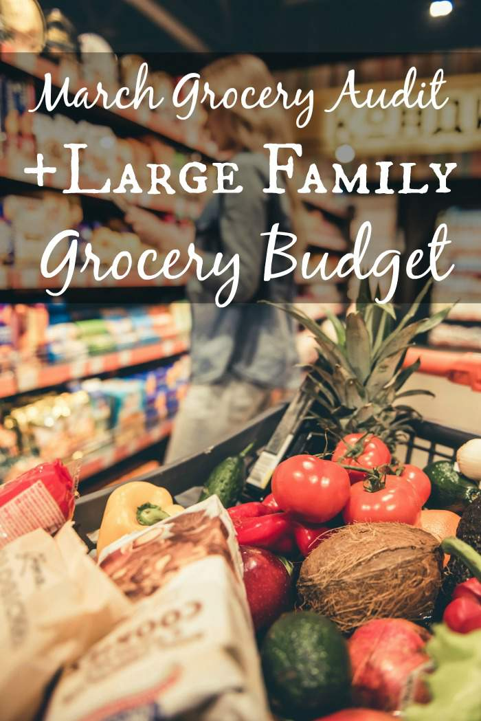 The March Grocery Audit is here! Take a look at my large family grocery budget and see how my family of six's mostly organic diet compares to the USDA Cost of Food at Home's projections. How does your family's grocery budget compare?