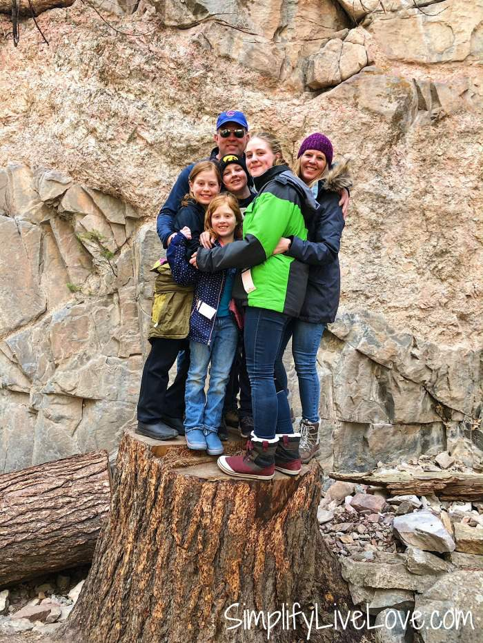 family portrait on a tree stump at Hanging Lake in Glenwood Canyon