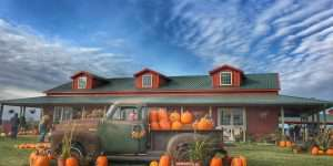 Harvestville Farm Pumpkin patches Iowa