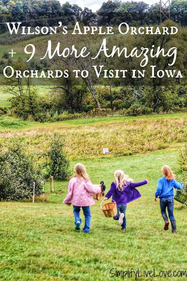 Top 10 Apple Orchards in Iowa