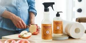 Budget & Eco Friendly Cleaning Products + Free Fall Mrs. Meyers