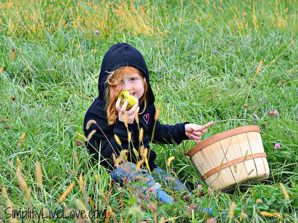 girl eating an apple at wilson's apple orchard iowa city