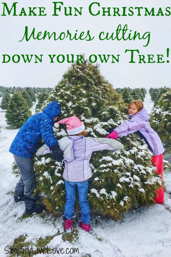Kids hugging a cut your own tree at Up North Pines in Davenport Iowa