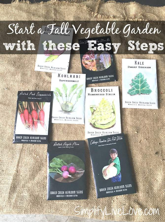 Start a Fall Vegetable Garden with these Easy Steps
