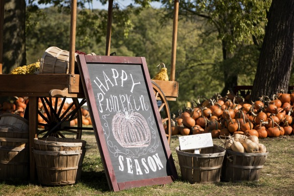 happy pumpkin season sign