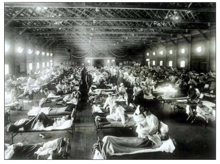 Ready Made Lesson on the Spanish Influenza