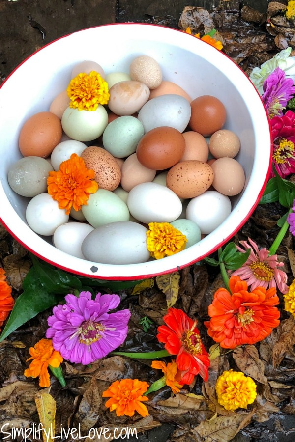 bowl of eggs and flowers