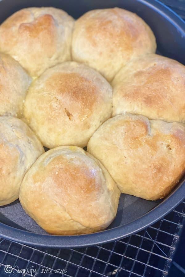baked sourdough dinner rolls in pan